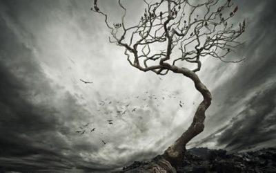 Qi Gong et gestion de la douleur