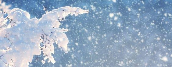 Qi Gong des saisons: Solstice d'Hiver 冬至