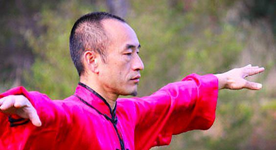 Ziran Men Qi Gong niveau 2: 13, 14 et 15 Juin 2014 à Nantes