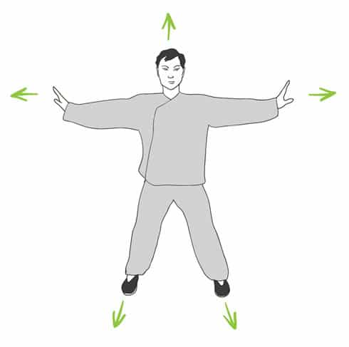 Exercices de Qi Gong du printemps. Illustration : Mohammed Saïah