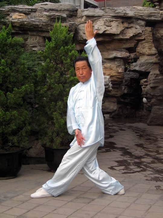 La paume qui pointe vers le ciel et dessine la terre (Zhi Tian Hua Di Zhang)