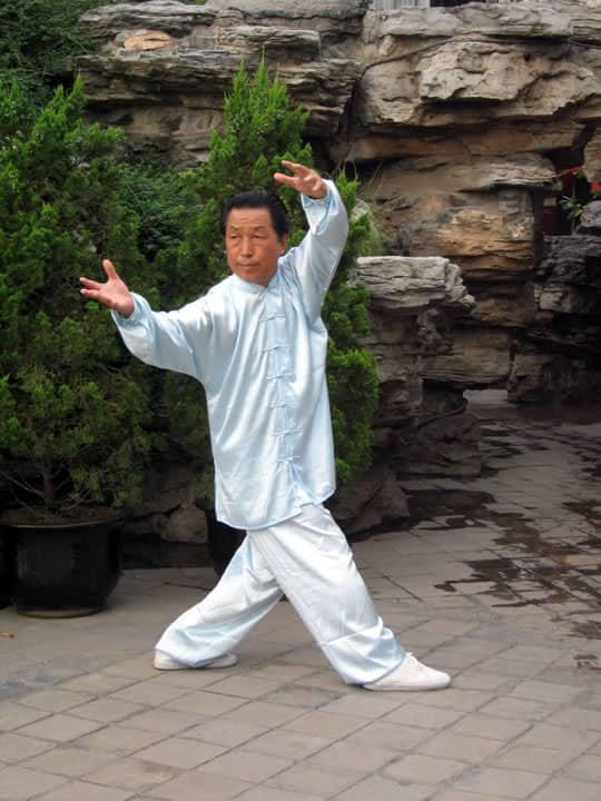 La paume du lion qui roule le ballon (Shi Zi Gun Qiu Zhang)