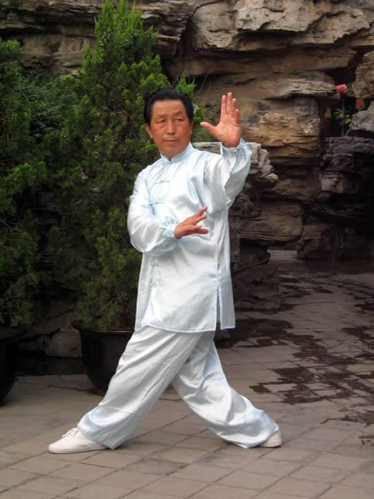 La paume de la meule (Tui Mo Zhang)