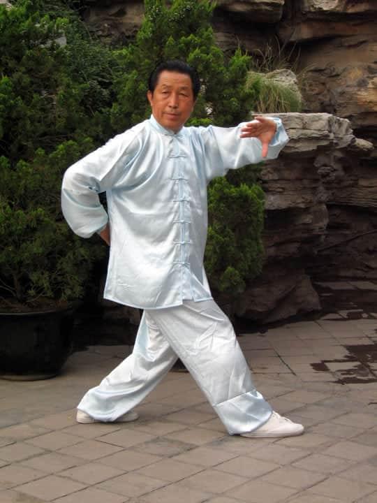La paume du poisson yin yang (Yin Yang Yue Zhang)
