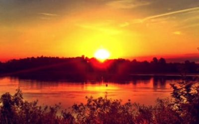 Qi Gong des saisons: Solstice d'Eté 夏至