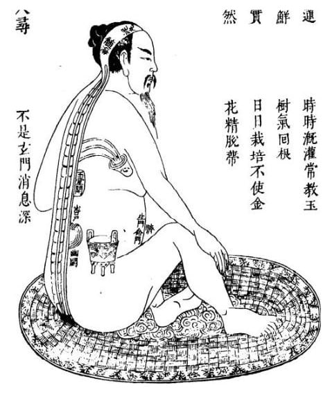 Respiration Qi Gong (posture assise)