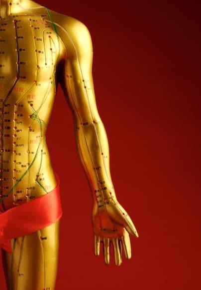Les méridiens d'acupuncture