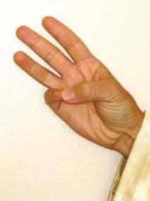 Mudra Pi du Qi Gong du Singe de Feu