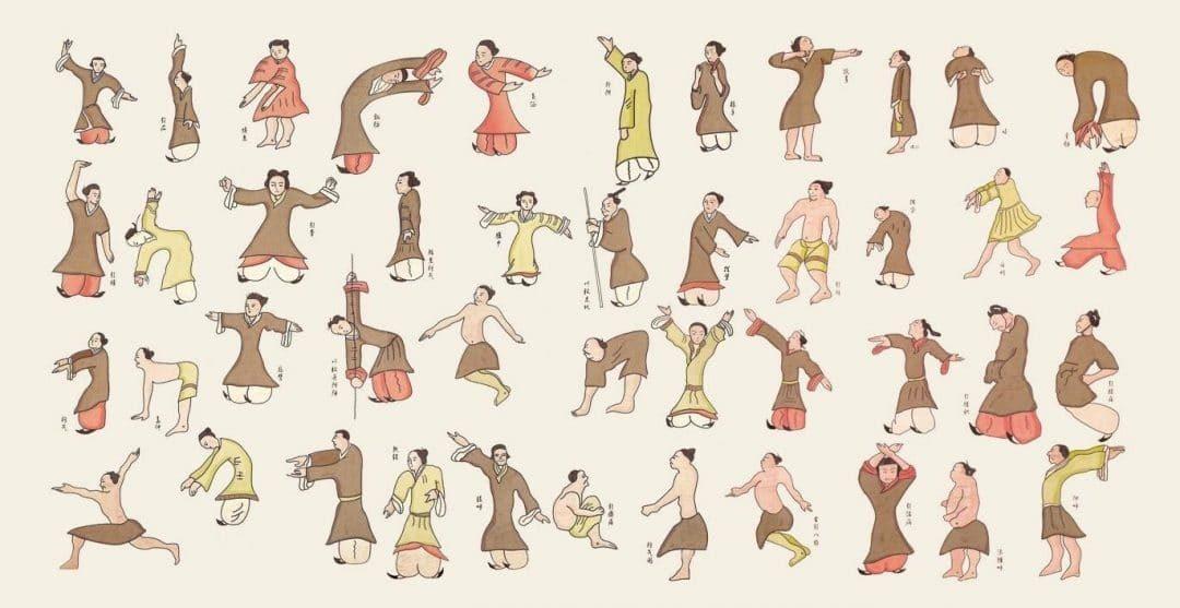Ateliers Qi Gong de l'été: animaux de Hua To et Lian  Gong