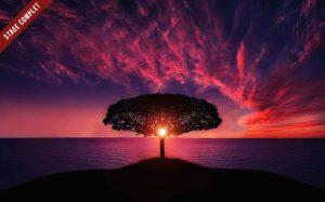 Posture de l'arbre Qi Gong